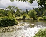 arboretum Wojsławice - jeden ze stawów