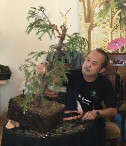 drutowanie głównycg gałęzi