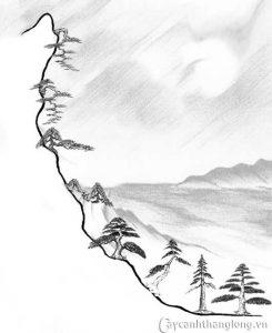 style bonsai