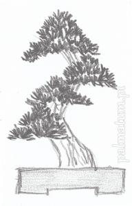 moyogi (styl wyprostowany nieregularny)