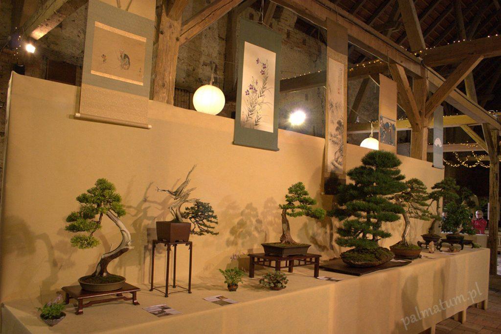 Wojsławice wystawa bonsai 2018