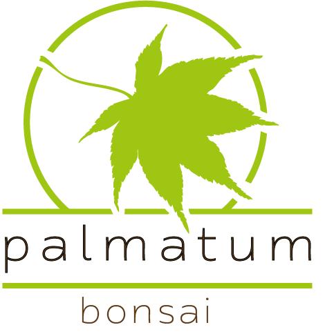 Palmatum.pl